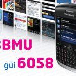 dang-ky-goi-blackberry-BBMU-3G-vinaphone