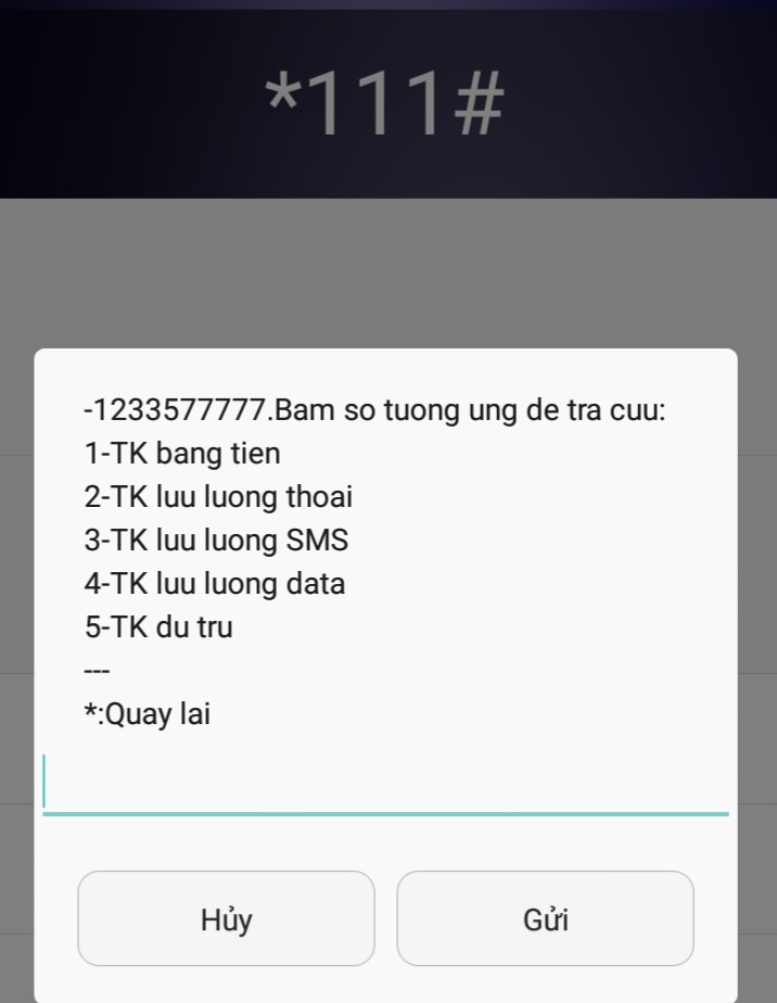 tra-cuu-thong-tin-khuyen-mai-vinaphone-088