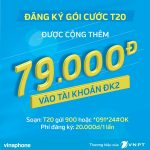dang-ky-goi-cuoc-t20-vinaphone