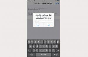 Lúc này trên iPhone sẽ yêu cầu bạn đăng nhập vào Apple ID bạn vừa đăng kí. Bạn nhập mật khẩu vào để sử dụng Apple ID.
