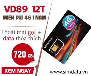 Mua sim data vd89 12T vinaphone giá rẻ