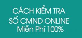 Cách tra cứu kiểm tra số cmnd online Miễn Phí 100% qua cục thuế