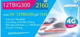 Đăng ký gói BIG300 Vinaphone chu kỳ dài 6 tháng, 12 tháng (6TBIG300, 12TBIG300 Vinaphone)